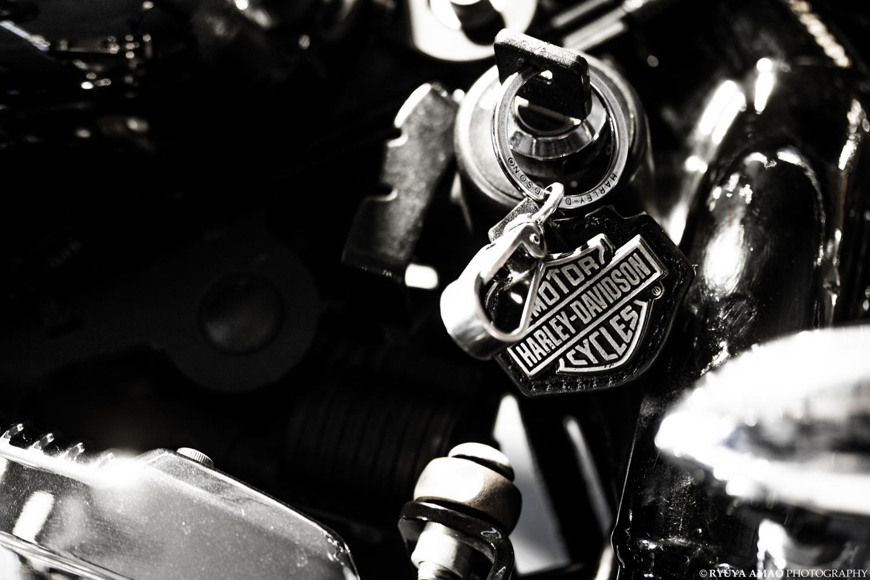 Harley-Davidson : Key Chain